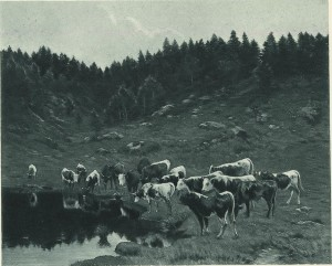 Herd of cows in the mountains of Drill, 1889 , whereabouts unknown .